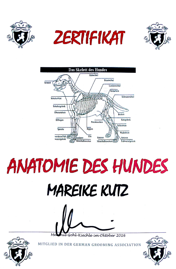 Tolle Anatomie Des Hufes Ideen - Menschliche Anatomie Bilder ...